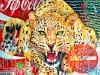 leopard-140x140-1
