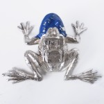 Sweetlove Cloned Frog Blue 1