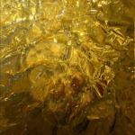 Jason Young, Shiny Gold, 2017